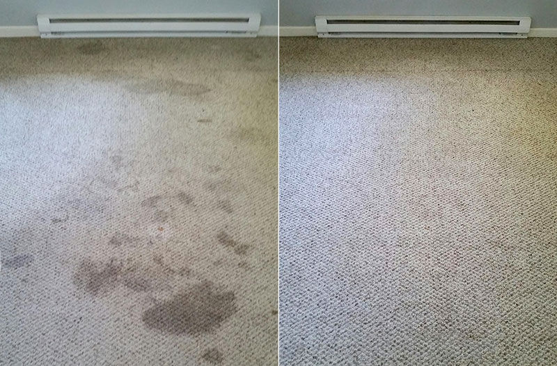M and J Premiere Carpet and Tile Cleaning cleans carpets.